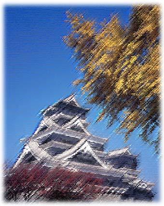 瑞鷹純米吟醸「熊本城」